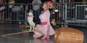 Dogdancing na Countryfeste