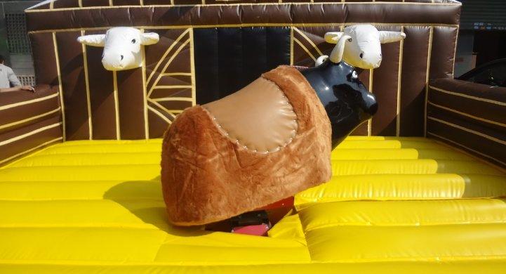 Ródeo býk
